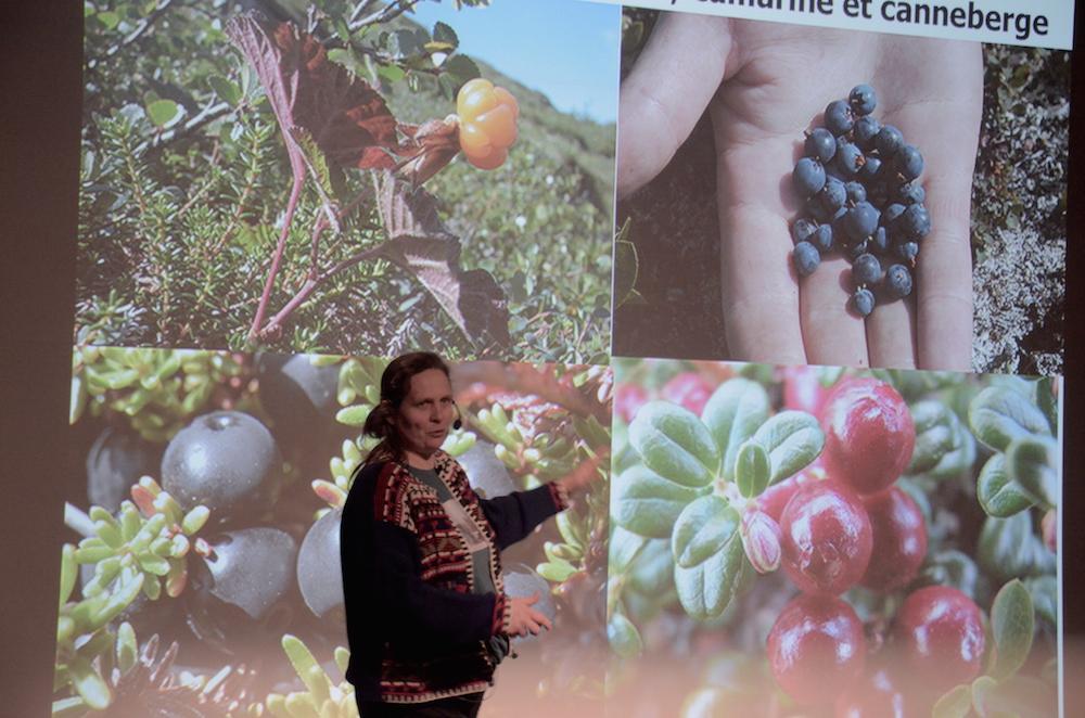 Esther Lévesques, professeure en sciences de l'environnement à l'Université du Québec à Trois-Rivières