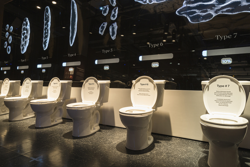 Photo d'une série de toilettes présentées dans l'exposition Ô merde!