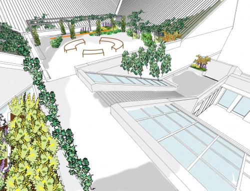 Le Musée se dote d'un toit vert et communautaire