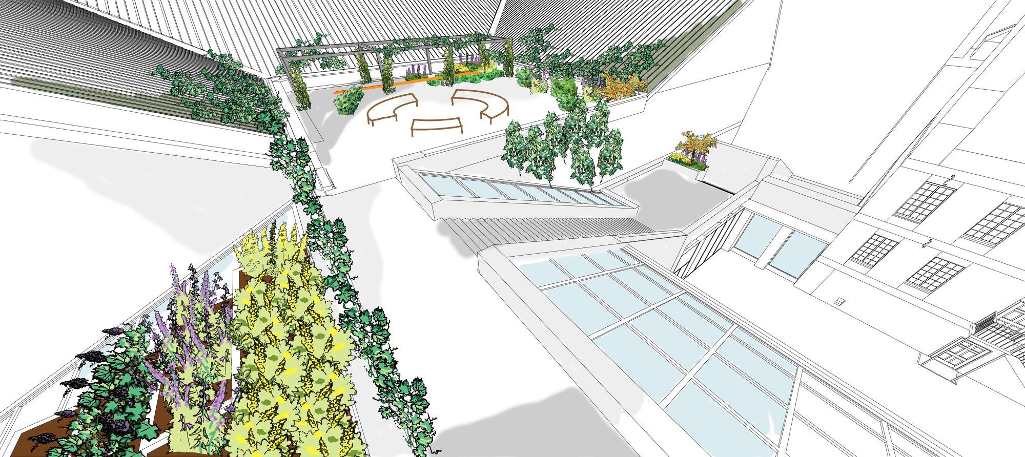 Croquis 3D du plan d'aménagement des toits du Musée, montrant des aménagements faits au fil des ans qui seront graduellement envahis de végétation.